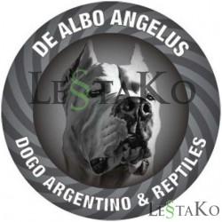 Sticker Dogo Argentino 15x15cm