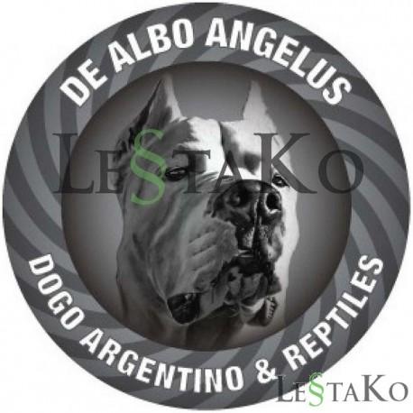 Nalepka argentinska doga 15x15cm